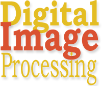 dip-mini-logo