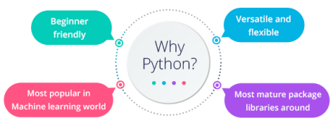 Image result for why python